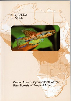 Colour Atlas of Cyprinodents