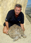 Bild pantherschildkroetedirmitic_project_news_bildkleinlinks_116.jpg